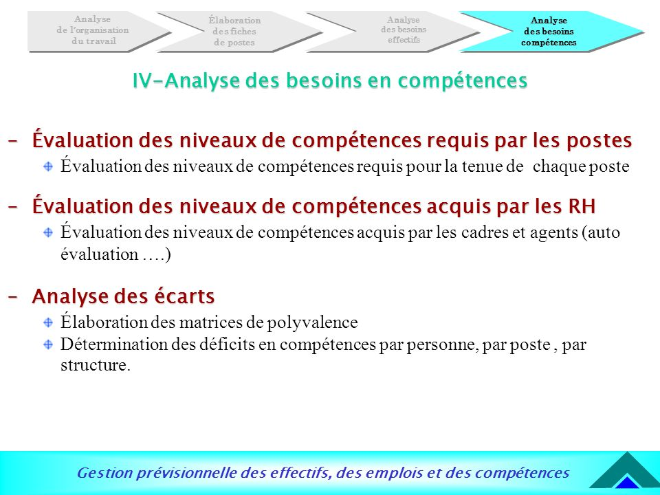 IV-Analyse des besoins en compétences