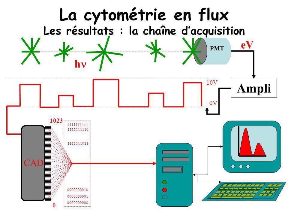 La cytométrie en flux Les résultats : la chaîne d'acquisition
