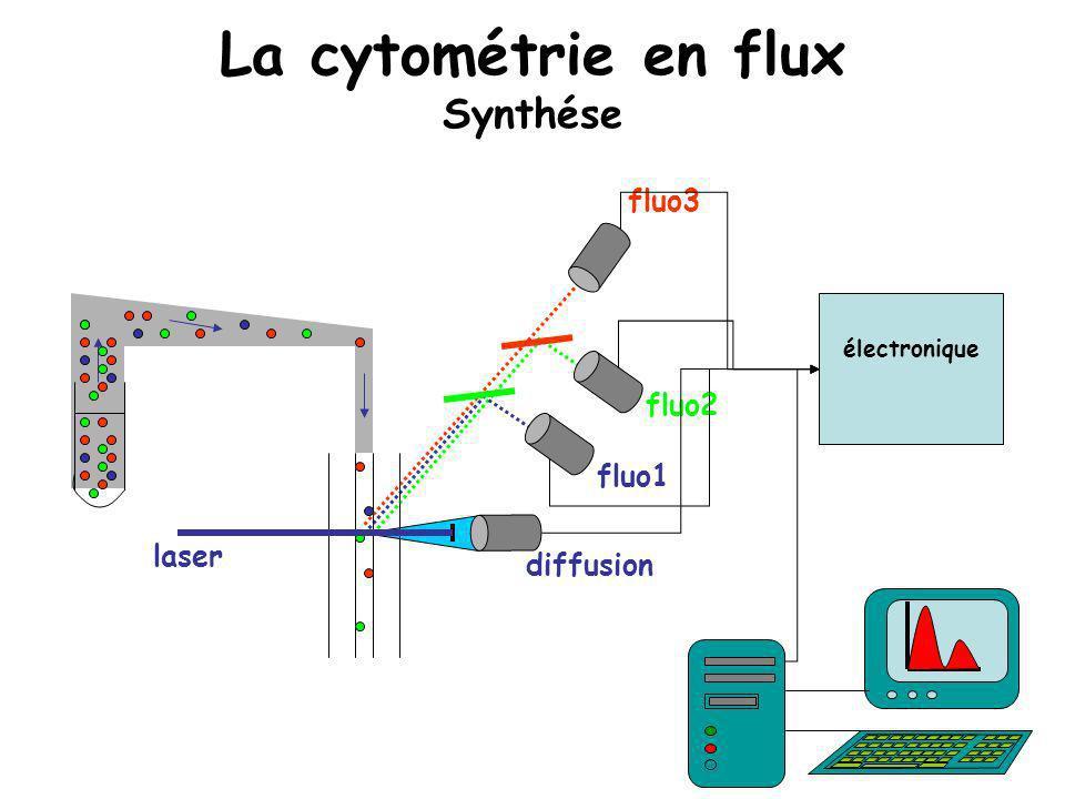 La cytométrie en flux Synthése