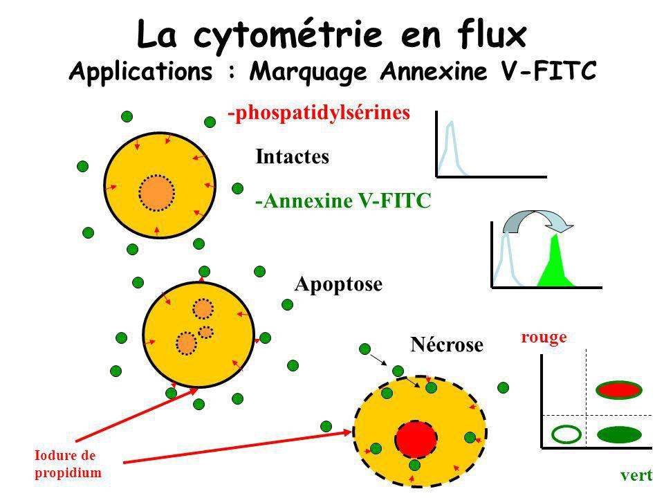 La cytométrie en flux Applications : Marquage Annexine V-FITC