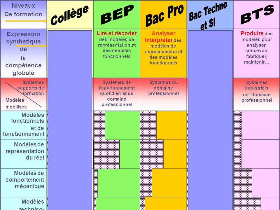 Bac Techno et SI Collège Bac Pro BEP BTS Niveaux De formation