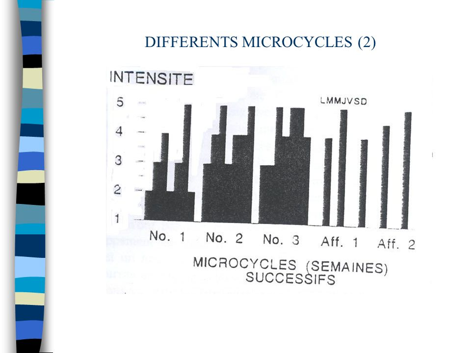 DIFFERENTS MICROCYCLES (2)