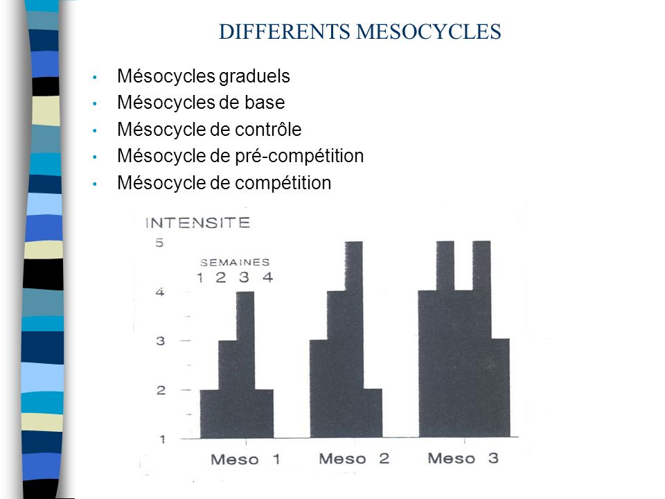 DIFFERENTS MESOCYCLES