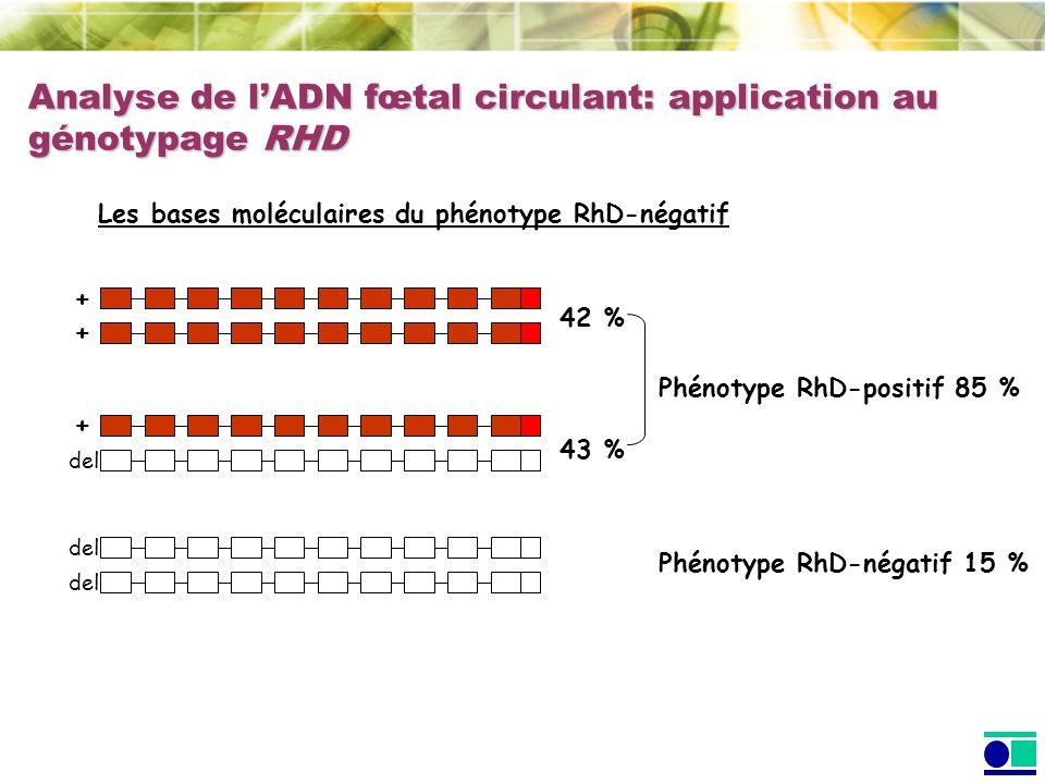 Analyse de l'ADN fœtal circulant: application au génotypage RHD