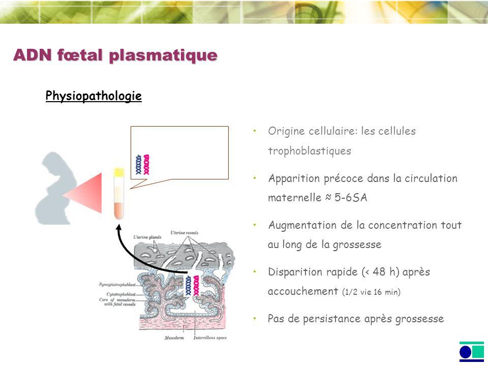ADN fœtal plasmatique Physiopathologie