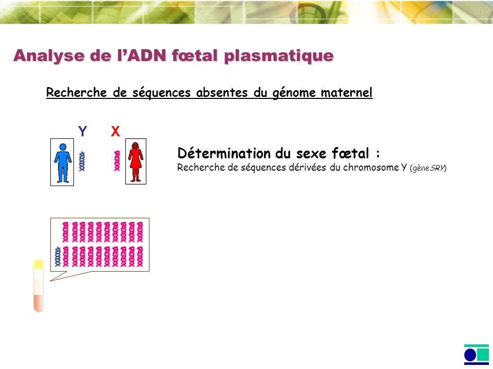 Analyse de l'ADN fœtal plasmatique