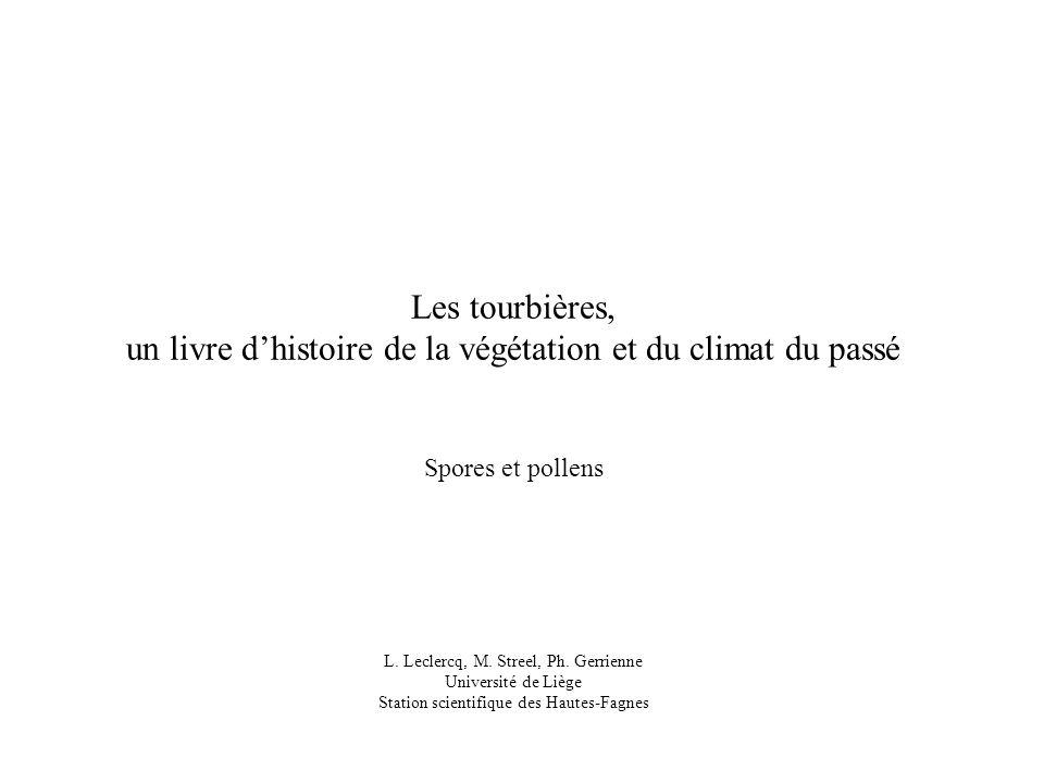 un livre d'histoire de la végétation et du climat du passé