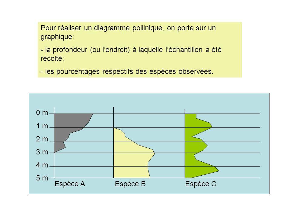 Pour réaliser un diagramme pollinique, on porte sur un graphique: