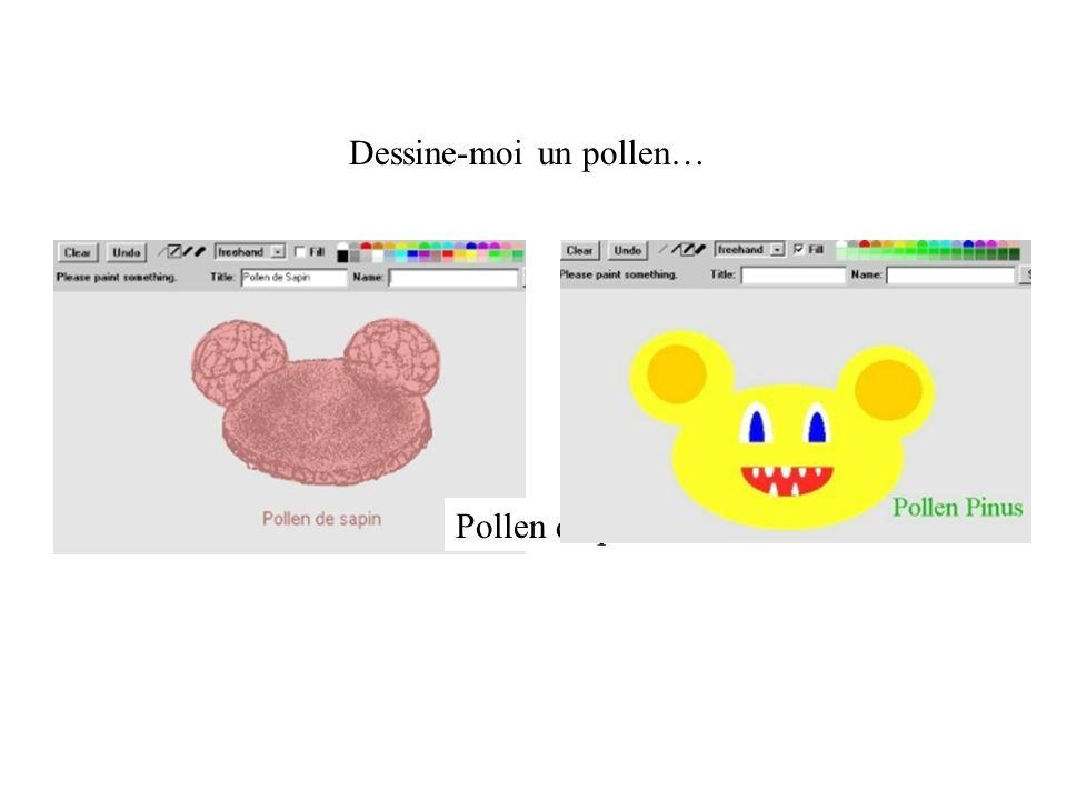 Dessine-moi un pollen…