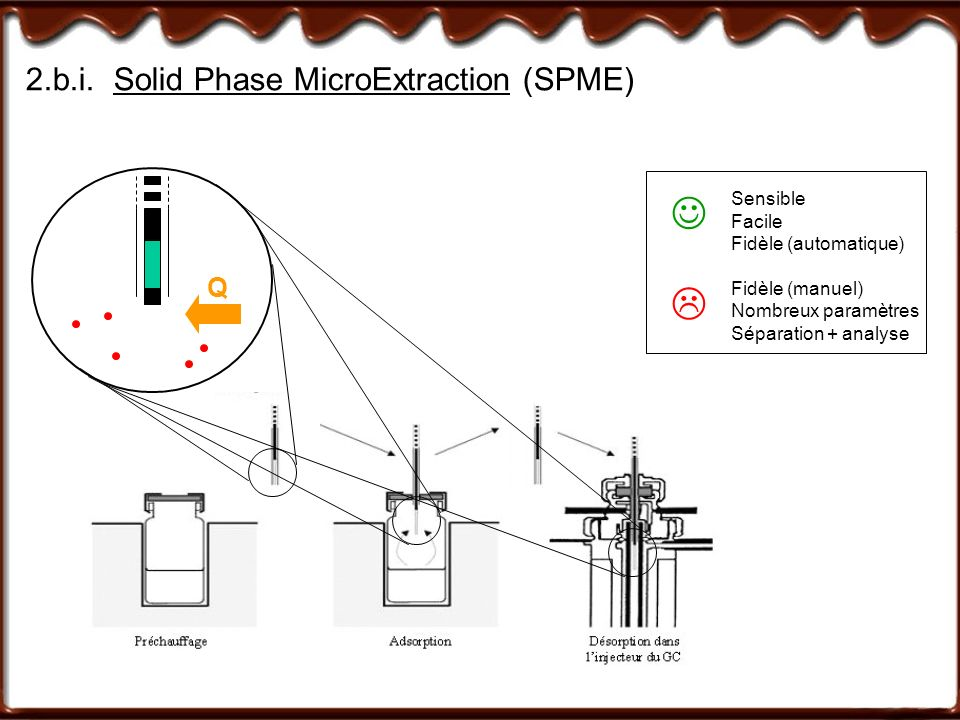 2.b.i. Solid Phase MicroExtraction (SPME)