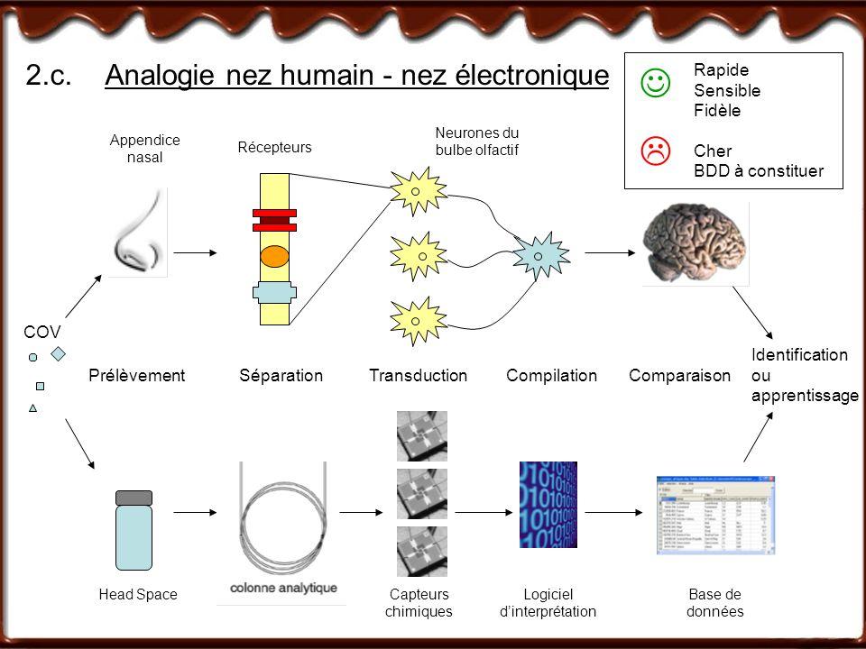 2.c. Analogie nez humain - nez électronique