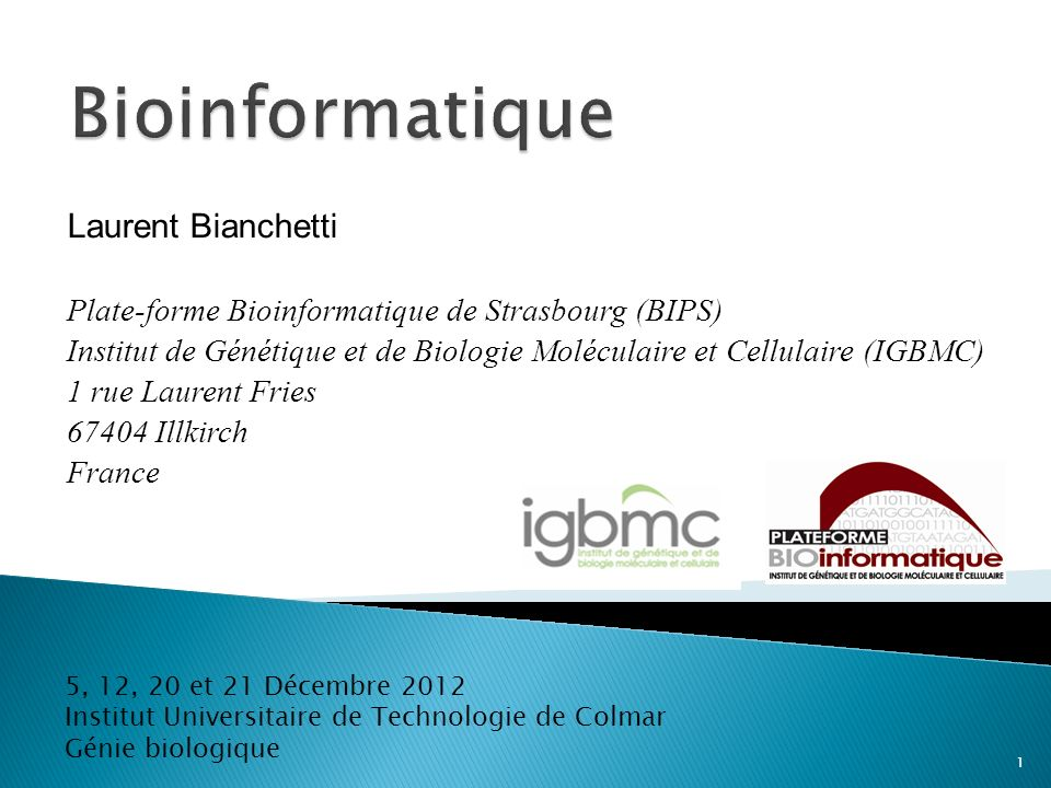 Bioinformatique Laurent Bianchetti
