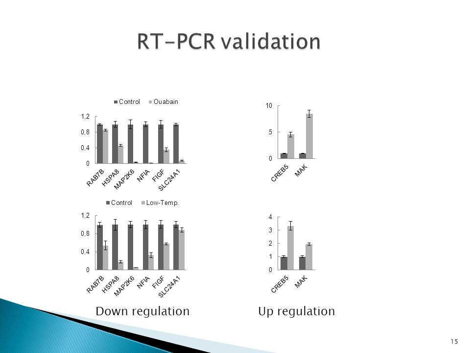 RT-PCR validation Down regulation Up regulation