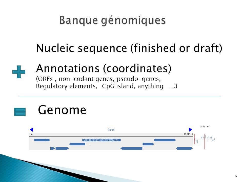 Genome Banque génomiques Nucleic sequence (finished or draft)