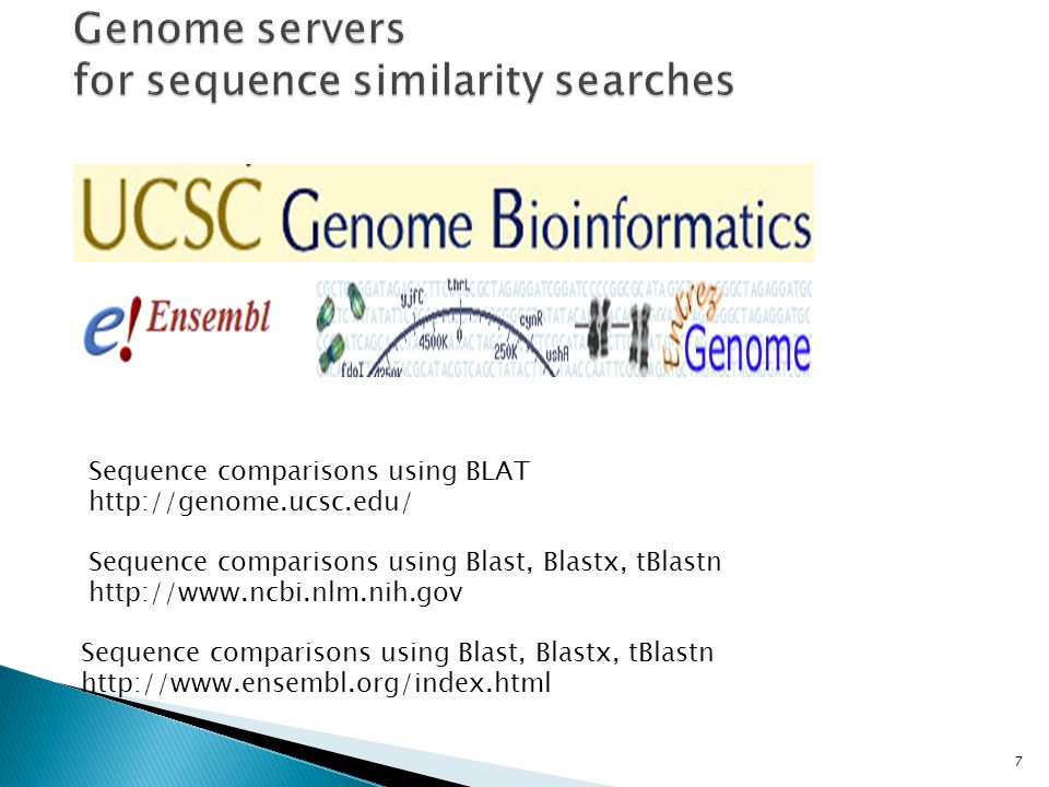 Genome servers for sequence similarity searches