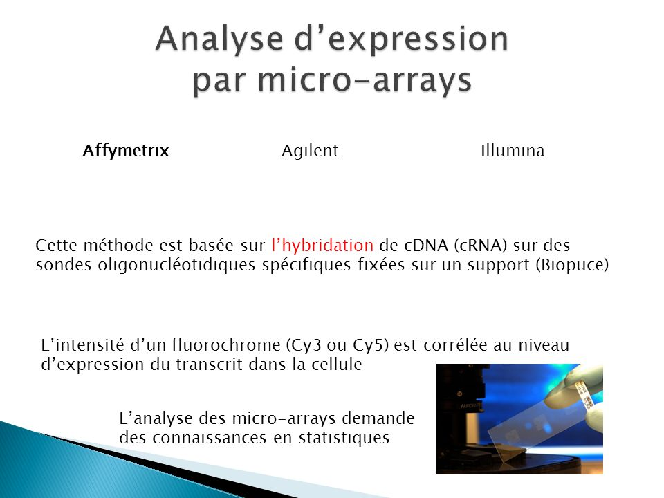 Analyse d'expression par micro-arrays