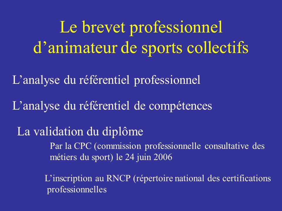 Le brevet professionnel d'animateur de sports collectifs