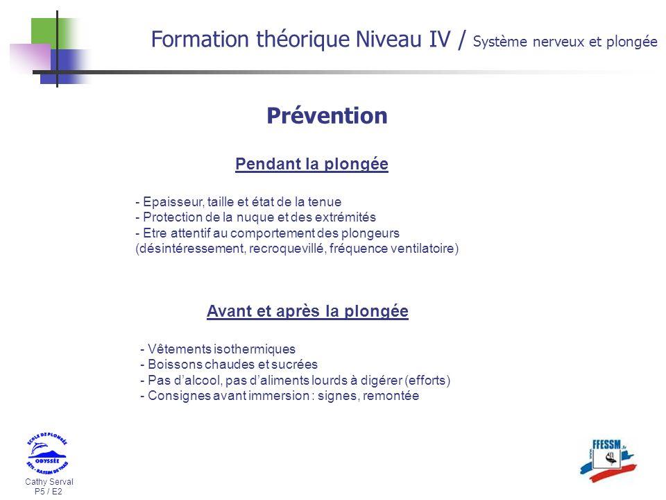Formation théorique Niveau IV / Système nerveux et plongée