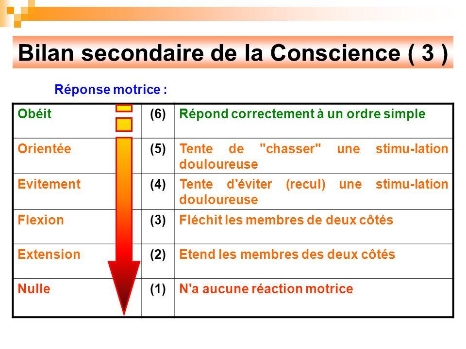 Bilan secondaire de la Conscience ( 3 )