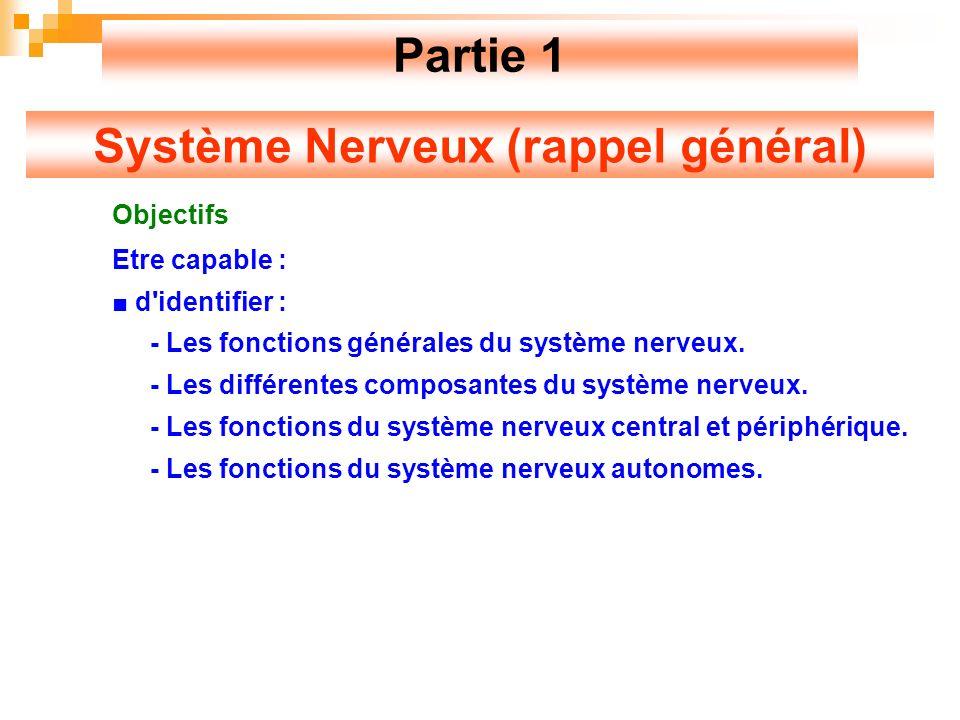 Système Nerveux (rappel général)