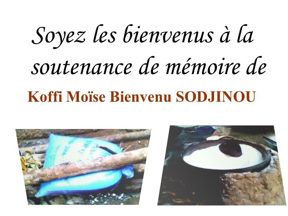 Koffi Moïse Bienvenu SODJINOU
