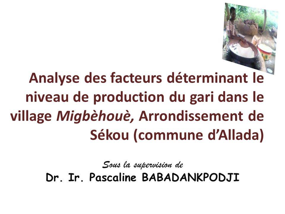 Sous la supervision de Dr. Ir. Pascaline BABADANKPODJI
