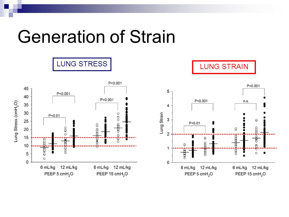 Generation of Strain LUNG STRESS LUNG STRAIN