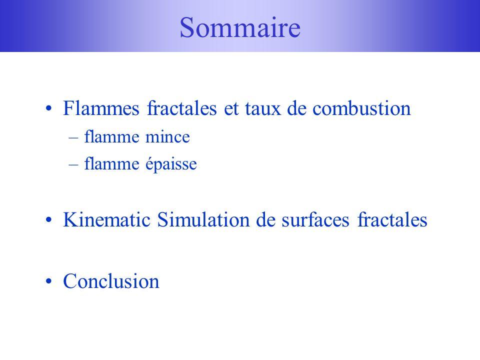 Sommaire Flammes fractales et taux de combustion