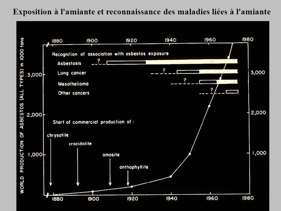 Exposition à l amiante et reconnaissance des maladies liées à l amiante