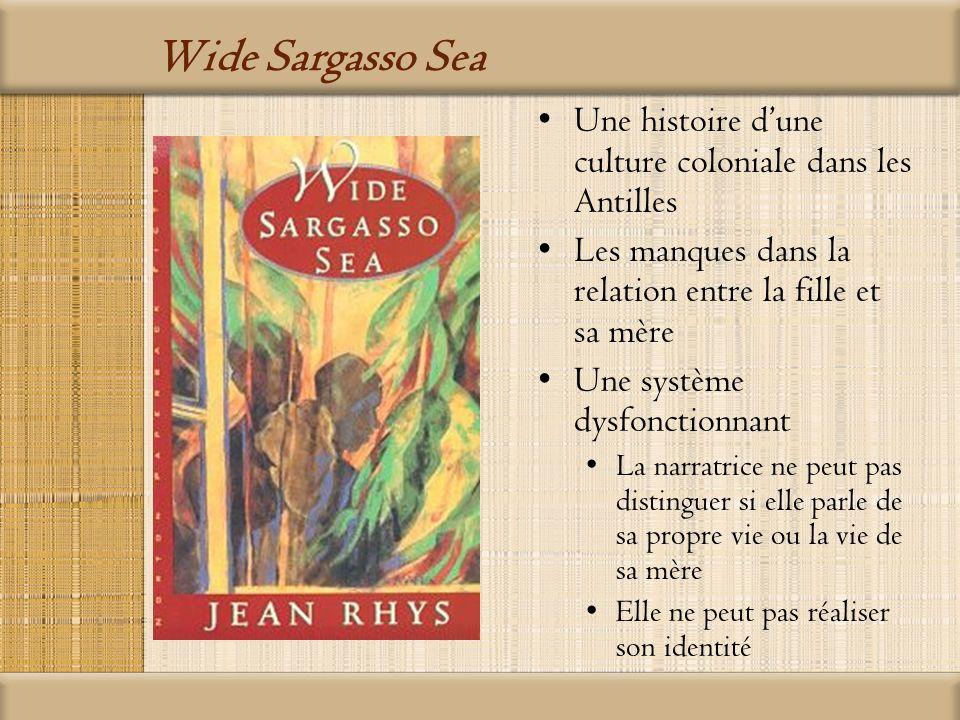 Wide Sargasso Sea Une histoire d'une culture coloniale dans les Antilles. Les manques dans la relation entre la fille et sa mère.