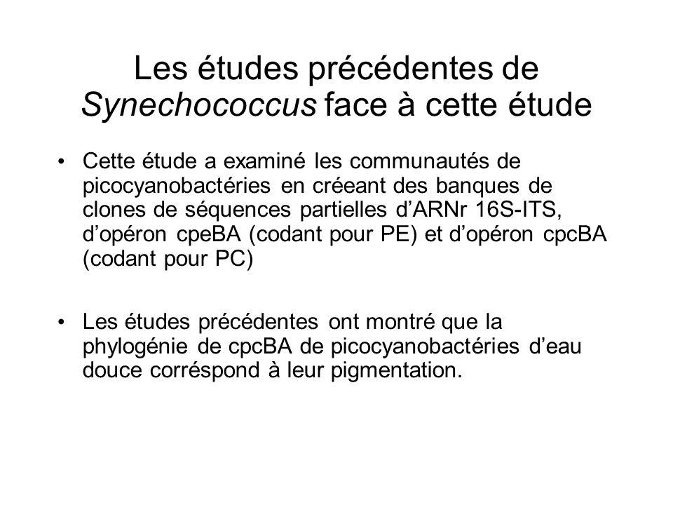 Les études précédentes de Synechococcus face à cette étude