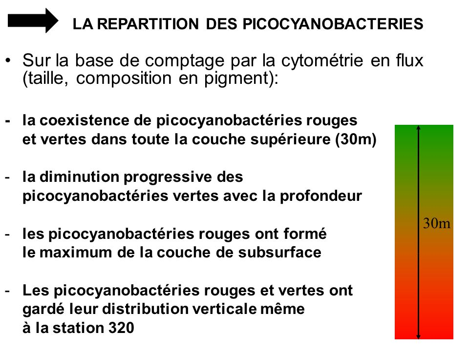LA REPARTITION DES PICOCYANOBACTERIES