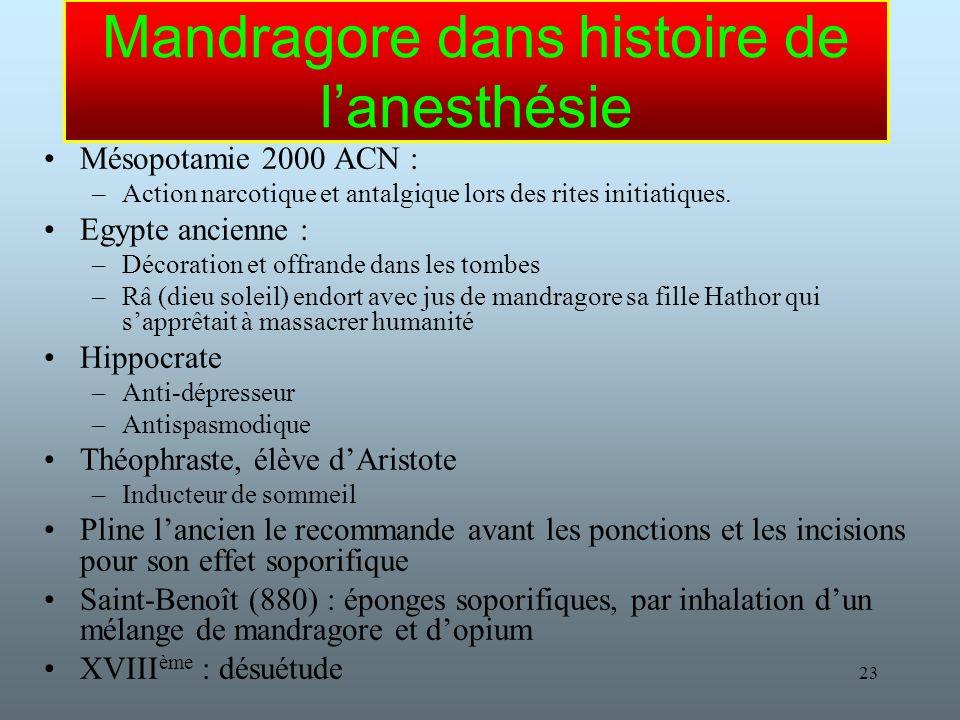Mandragore dans histoire de l'anesthésie