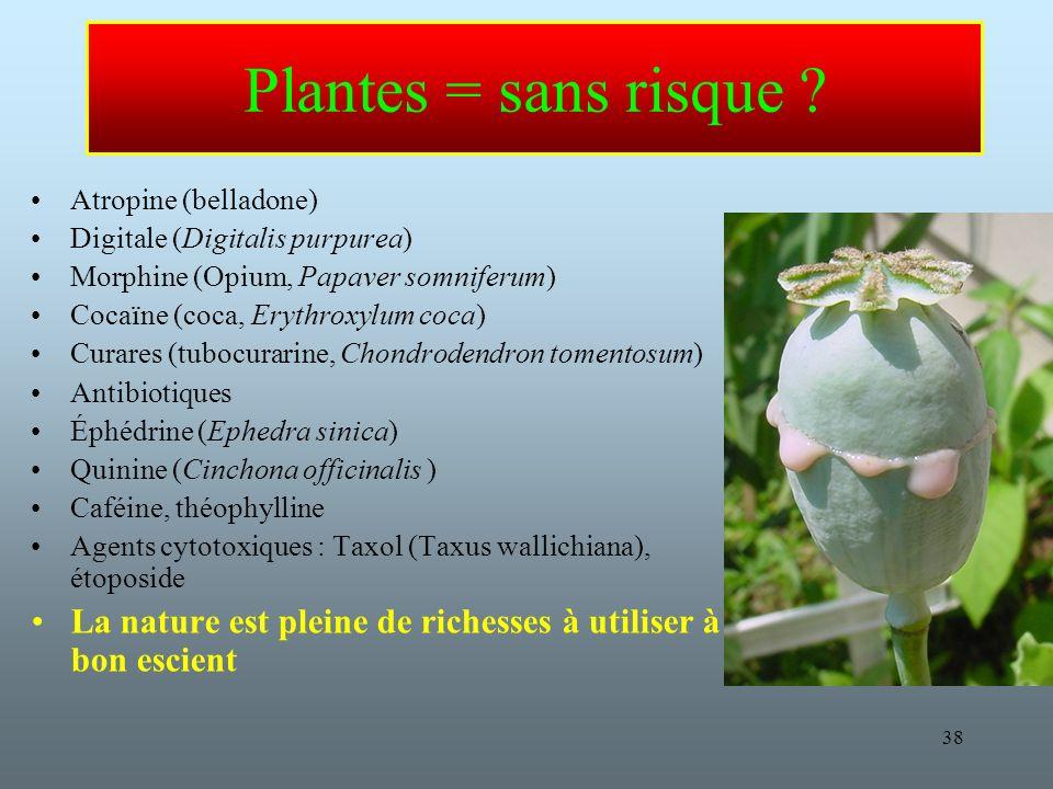 Plantes = sans risque Atropine (belladone) Digitale (Digitalis purpurea) Morphine (Opium, Papaver somniferum)