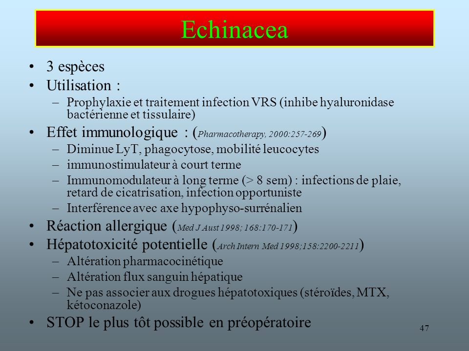 Echinacea 3 espèces Utilisation :