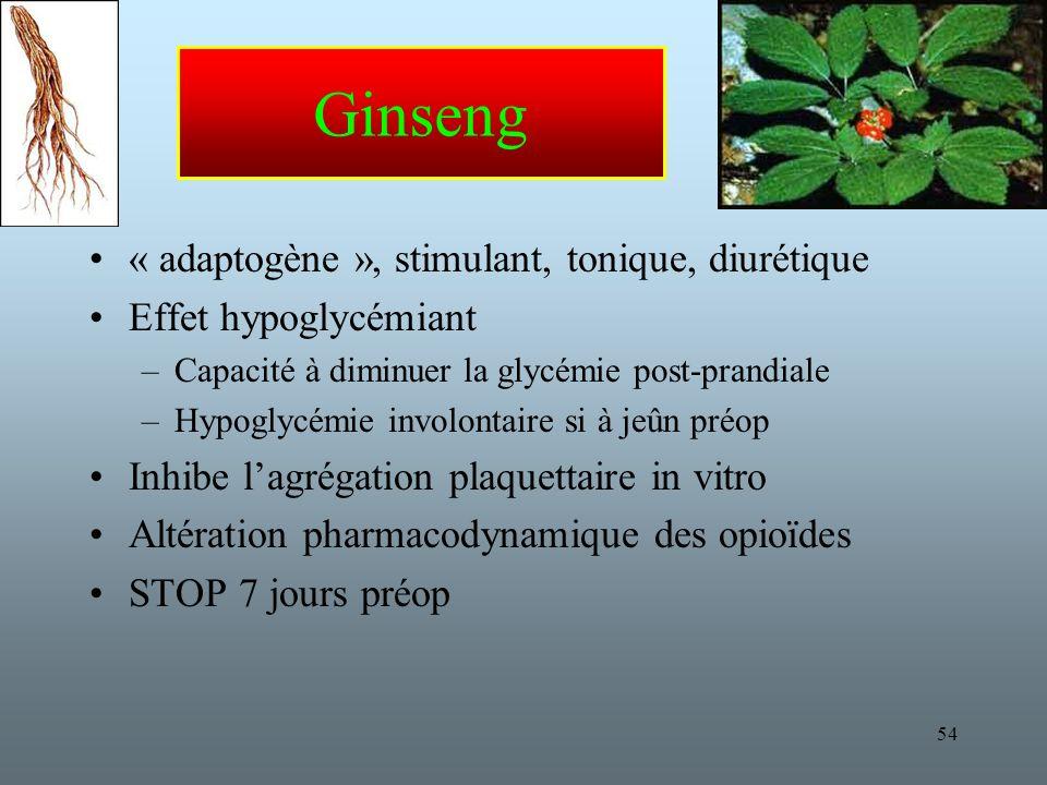 Ginseng « adaptogène », stimulant, tonique, diurétique