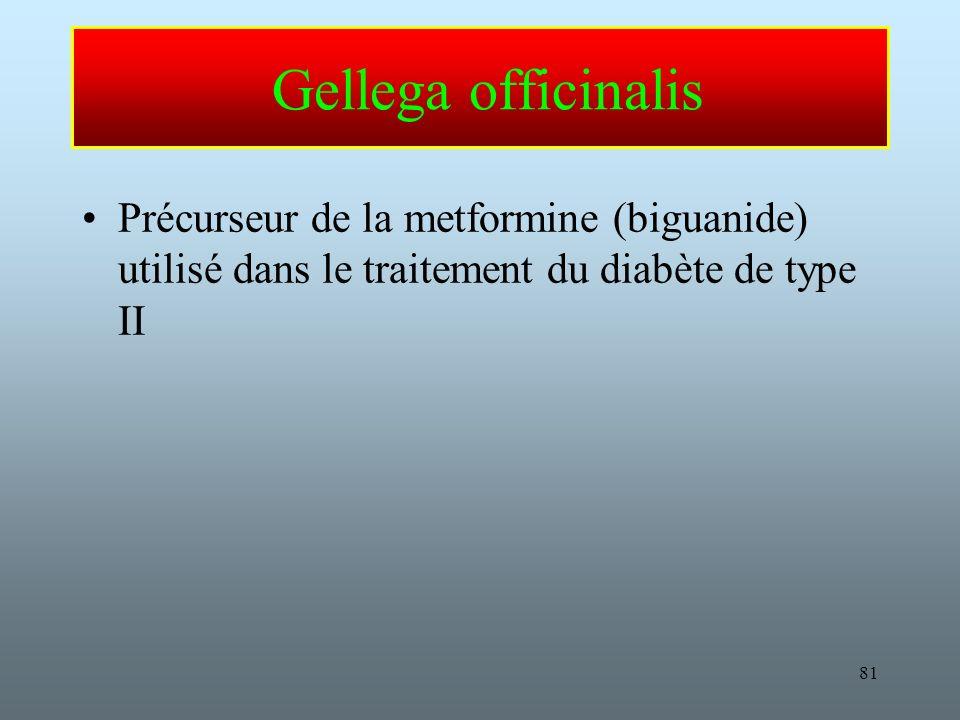 Gellega officinalis Précurseur de la metformine (biguanide) utilisé dans le traitement du diabète de type II.