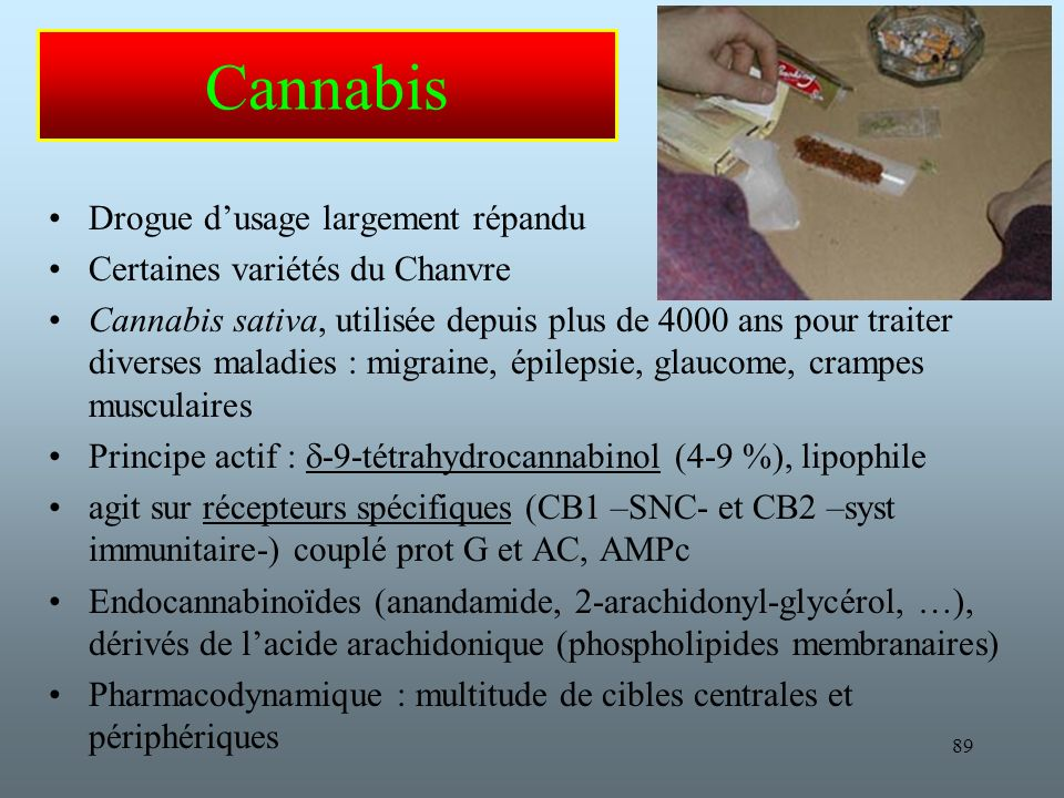 Cannabis Drogue d'usage largement répandu
