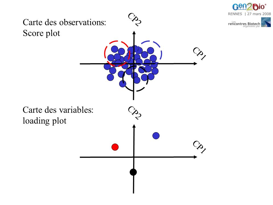 CP1 CP2 Carte des observations: Score plot CP2 CP1 Carte des variables: loading plot