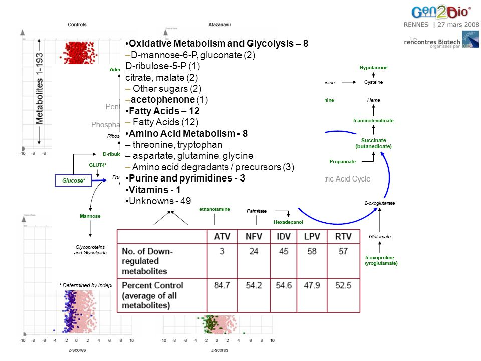 Oxidative Metabolism and Glycolysis – 8