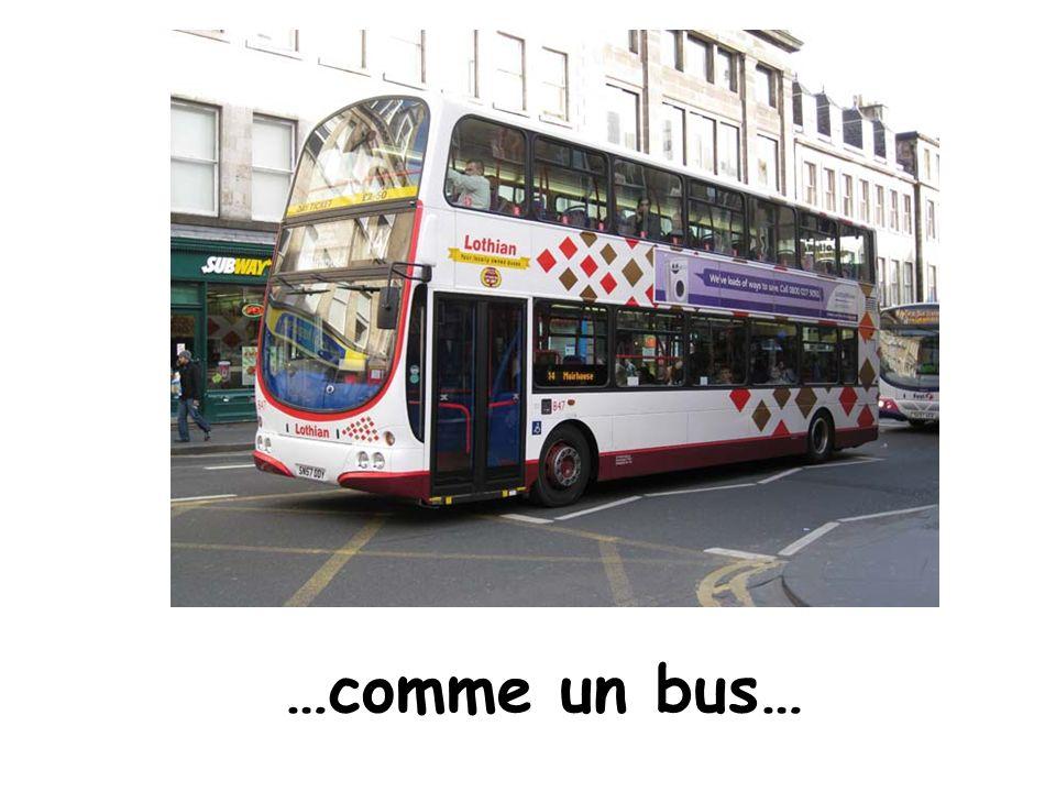 …comme un bus…