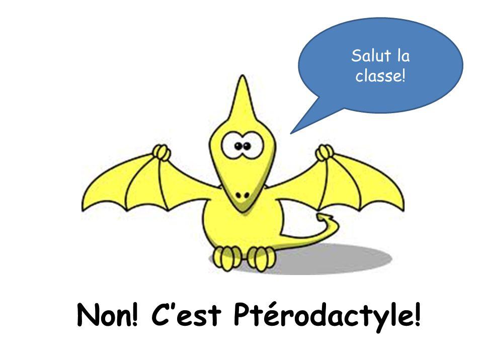 Non! C'est Ptérodactyle!