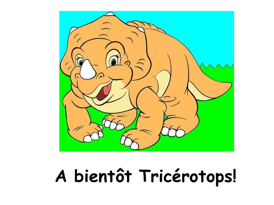 A bientôt Tricérotops!