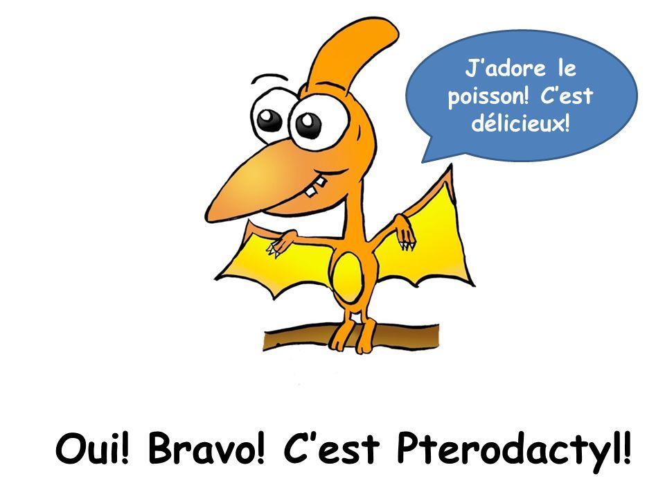 Oui! Bravo! C'est Pterodactyl!