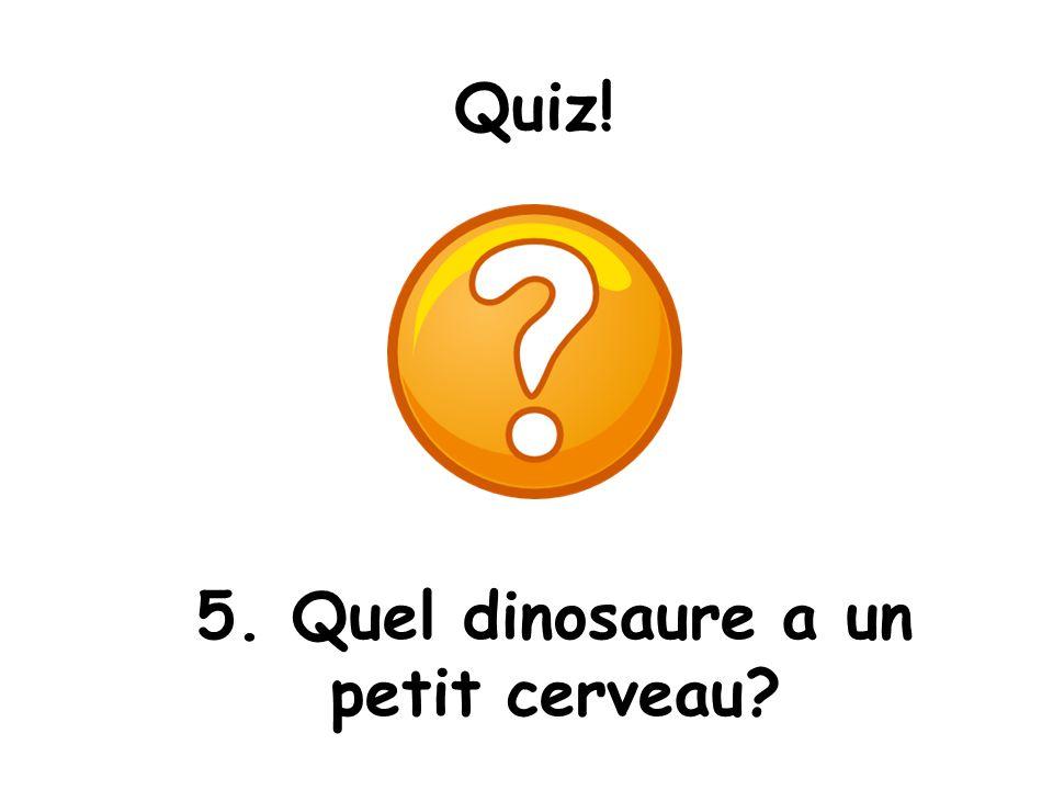 5. Quel dinosaure a un petit cerveau