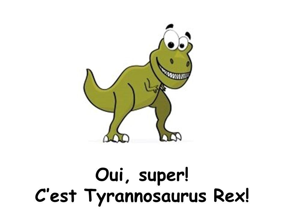 Oui, super! C'est Tyrannosaurus Rex!