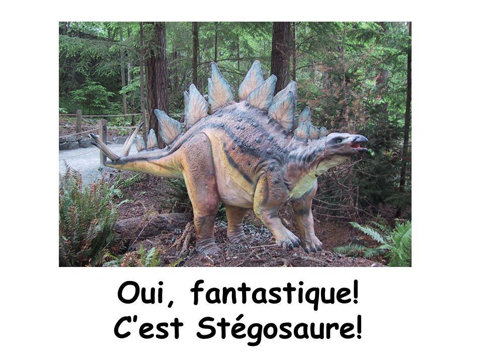 Oui, fantastique! C'est Stégosaure!
