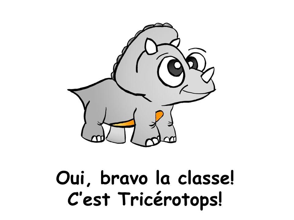 Oui, bravo la classe! C'est Tricérotops!