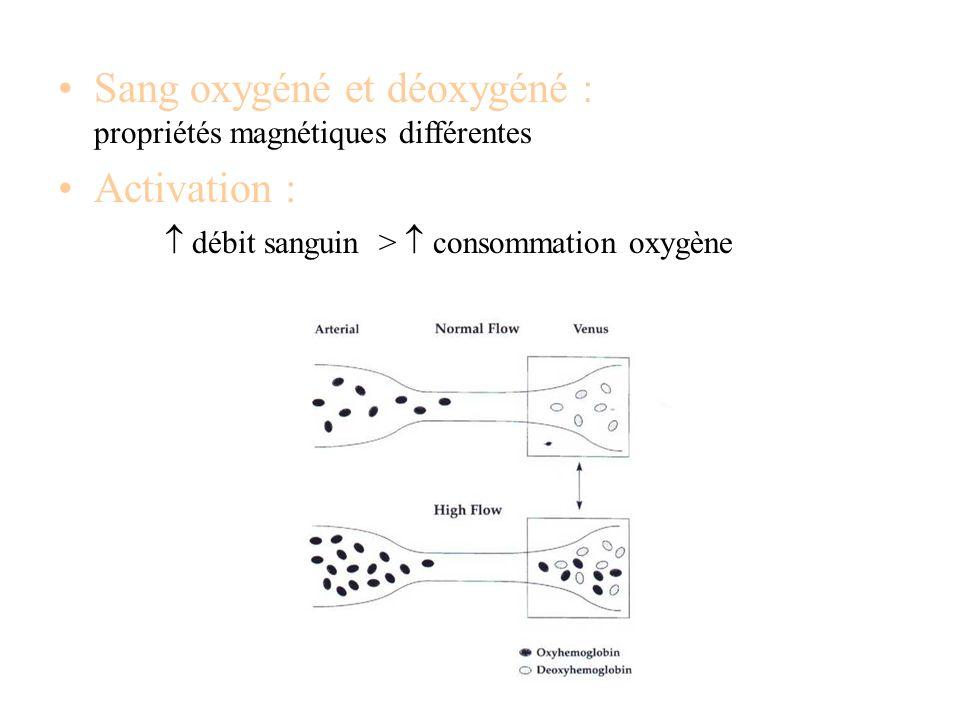Sang oxygéné et déoxygéné : propriétés magnétiques différentes