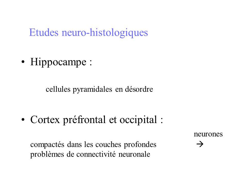 Etudes neuro-histologiques